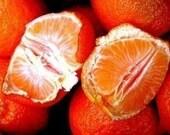 2 oz of Nothin But Butta Skin Therapy Organic, Vegan Tangerine, Mango, Cocoa , African Shea Butter