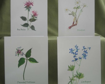 American Wildflowers Notecard Set with Envelopes