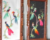 Tropical bird wall hangings with carved wood frames