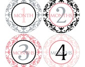 12 Monthly Baby Milestone Waterproof Glossy Stickers - Just Born - Newborn - Weekly stickers available - Design M007-04