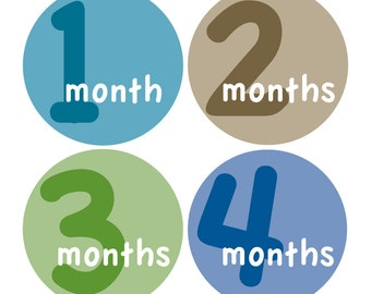 12 Monthly Baby Milestone Waterproof Glossy Stickers - Just Born - Newborn - Weekly stickers available - Design M014-01