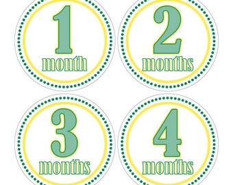 12 Monthly Baby Milestone Waterproof Glossy Stickers - Just Born - Newborn - Weekly stickers available - Design M001-03