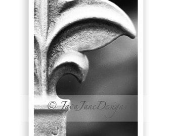 Letter F - Alphabet Photography Individual 4x6 Black and White Photo for Name Frames (F2)