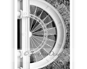 Letter D - Alphabet Photography Individual 4x6 Black and White Photo for Name Frames (D1)