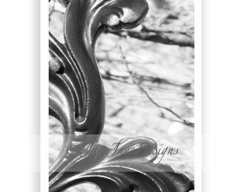 Letter L - Alphabet Photography Individual 4x6 Black and White Photo for Name Frames (L75)