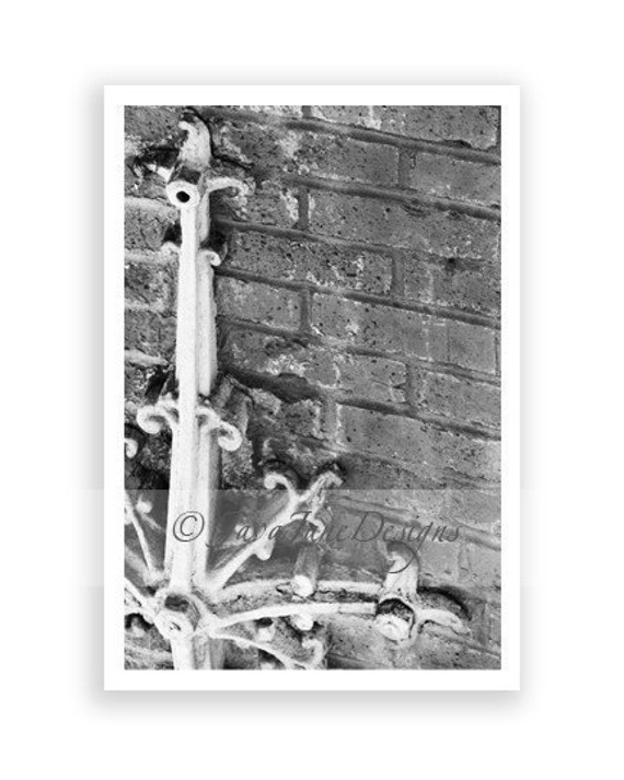 Letter L - Alphabet Photography Individual 4x6 Black and White Photo for Name Frames (L68)
