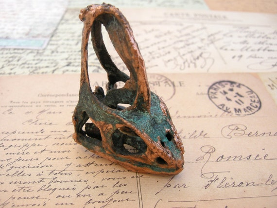 veiled chameleon lizzard skull bone copper by shannonamidon