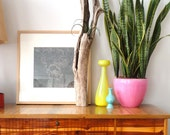 Driftwood Airplant Holder. Wall Mounted or Standing