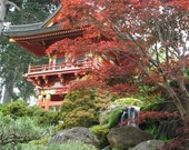 Japanese Tea Garden Fine Art Photo  8 by 10