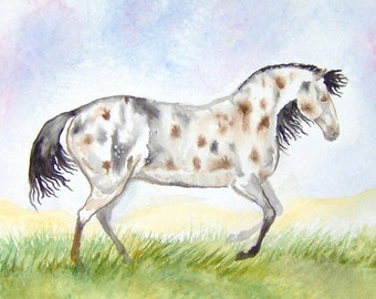 Horse Watercolor Original Painting