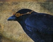 THE AVIATOR Funny Old Crow 10 x 6 Signed Fine Art Print