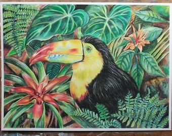 Toucan - Original Painting