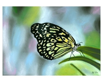 Butterfly Painting, Original Painting, Fly, Butterfly, Pastel, Realism, Girl, Bold, Colorful, Sale, Reduced Price