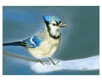 January Snow - Original Pastel Painting