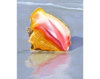 Shell On The Shore Painting Print
