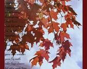 Discription of Fall 5x7