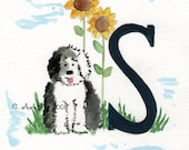 Scout's ABCs  S is for Sunflower