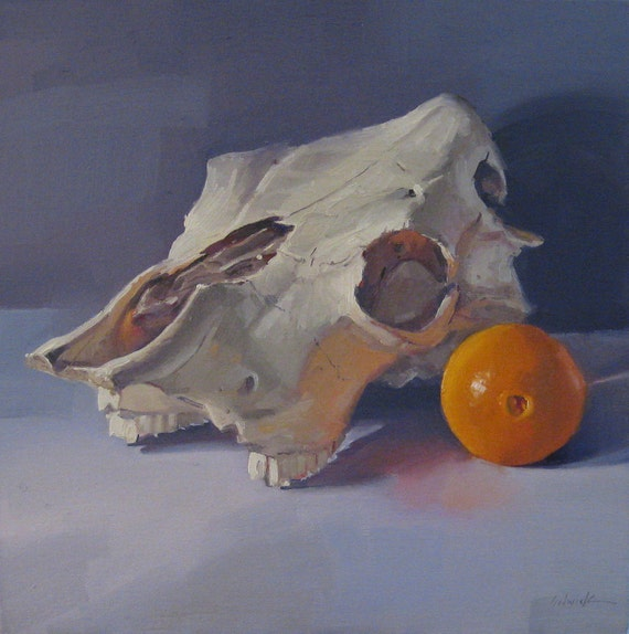 Cow Skull and Navel Orange - Oil Painting Original Art by Sarah Sedwick 12x12in