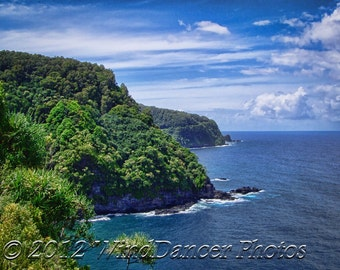 Road to Hana - Rainforest Coastline - Maui - Hawaii - Home Decor - Maui Photo - Office Decor - Hawaii Gift