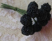 10 Composition Blackberries For Scrapbooking And Hat Making