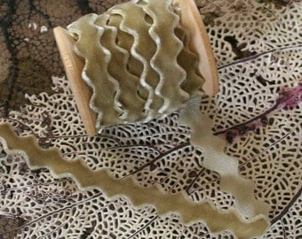 3 Yards Taupe Velvet Ric Rac Trim For Sewing Or Scrapbooking