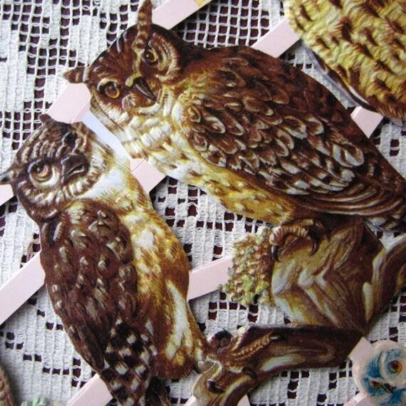 Germany Paper Scraps Die Cut Birds Of Prey Owls Hawks