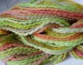 Salade de fruits pétillants--Handspun Yarn