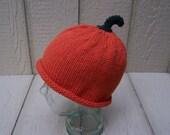 Adult Hat Heirloom colored Pumpkin Hat fall autumn punkin orange pumkin photo prop