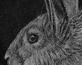 Rabbit in Profile -- Original Engraving by Hand on Black Marble