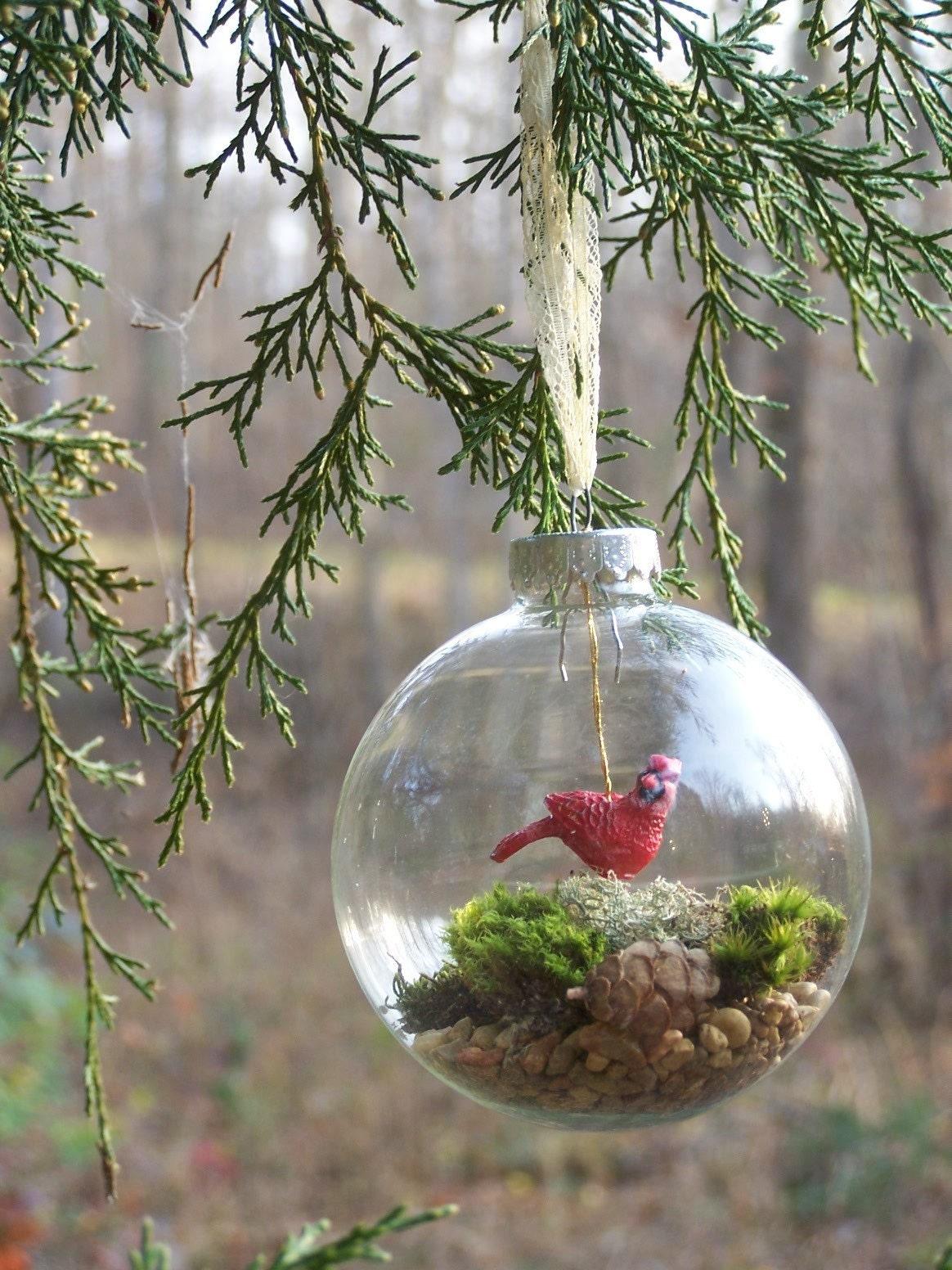 Live Moss Terrarium Christmas Ornament Shanelilyrain
