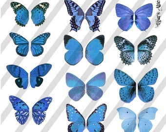 Digital Collage Sheet Blue Butterfly Fairy Wings (Sheet no. W23) Instant Download