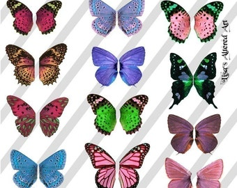 Digital Collage Sheet  Colorful Wings (Sheet no.W25) Instant Download