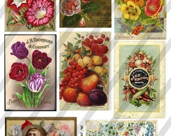 Vintage Flower Seed Packets, Digital Collage Sheet  (Sheet no.E7) Instant Download