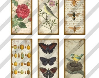 Nature Domino Digital Collage Sheet Art 1x2 inch Images (Sheet no. FS97) Instant Download