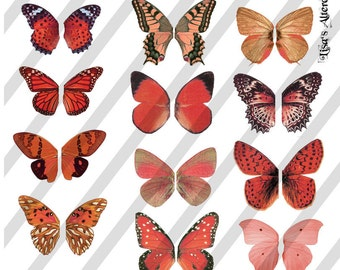Digital Collage Sheet Orange/Red  Butterfly Fairy Wings (Sheet no. W22) Instant Download