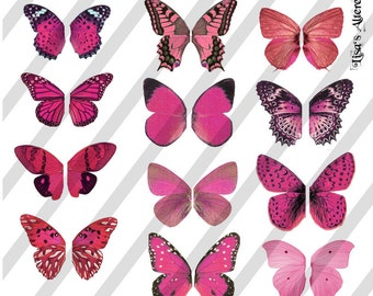 Digital Collage Sheet Pink Butterfly Fairy Wings (Sheet no. W20) Instant Download