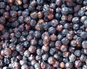Juniper Berries . Herbal Alchemy . Protection, Ghosts and Evil Spirits, Exorcism, Healing, Love, Psychic Awareness, Evil Eye