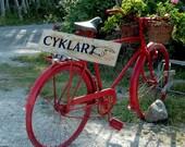 The Red Bike   10x10 photo