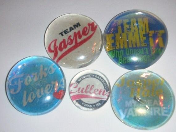 Team Cullen Magnets\/Pushpins