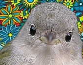 Groovy Bird Digital Art Print
