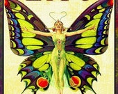 Butterfly Lady Refrigerator Magnet -  FREE US SHIPPING