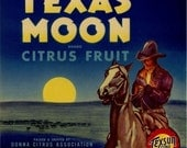 Texas Citrus Fruit Crate Label Cowboy Horse