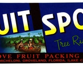 Fruit Spot  Florida CRATE LABEL