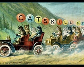 Catskills Mountains Cats in Car  Refrigerator Magnet