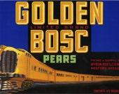 GOLDEN BOSC PEAR CRATE LABEL