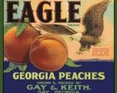 Eagle Georgia Peaches Refrigerator Magnet