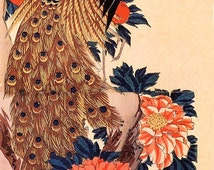 Japanese Peacock and Peony Flower Refrigerator Magnet -  FREE US SHIPPING