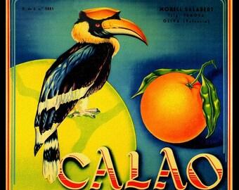 Spanish Orange Label with Bird  Refrigerator Magnet