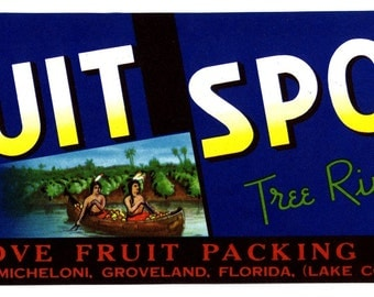 Fruit Spot  Florida CRATE LABEL