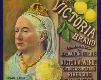 VICTORIA brand grapefruit crate label, Riverside- QUEEN